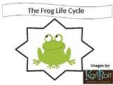 Frog Life Cycle Interactive Book + Activity Worksheets