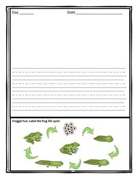 Frog Life Cycle Journal
