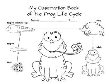 Frog Life Cycle Journal Spanish & English
