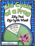 Frog Life Cycle Craftivity --- Lily Pad Life Cycle Wheel