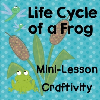 Frog Life Cycle Mini Lesson, Habitat Design Activity,  Cre