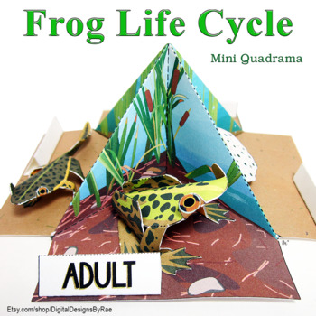 Frog Life Cycle Mini Quadrama