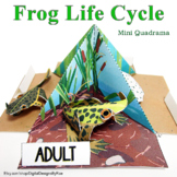 Frog Life Cycle Mini Quadrama