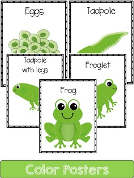 Frog Life Cycle: Mini Unit