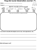 Frog Life Cycle Observation Journal and Worksheets