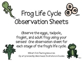 Frog Life Cycle Observation Sheets, Set of 4