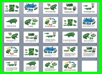 Frog Life Cycle PowerPoint - 3 Reading Levels + 40 Vocabulary Slides