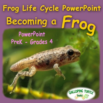 Frog Life Cycle PowerPoint - Becoming a Frog