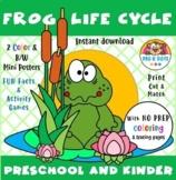 Frog Life Cycle Preschool & Kinder