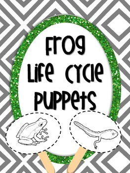 Frog Life Cycle Puppets