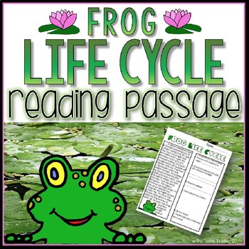 Frog Life Cycle Reading Passage