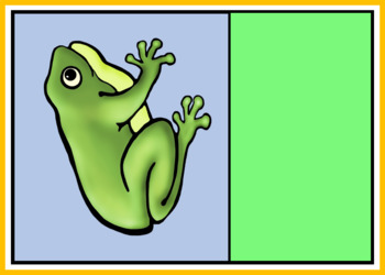Frog Life Cycle Sorting Cards