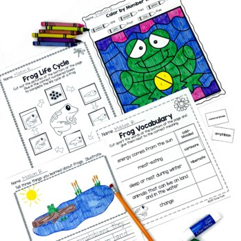 Life Cycle of a Frog - Posters, Printables, 5-Page Tab Book