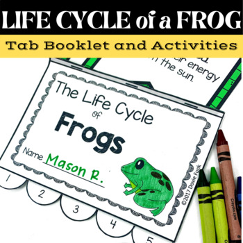 Frog Life Cycle Unit - Posters, Printables, 5-Page Tab Book