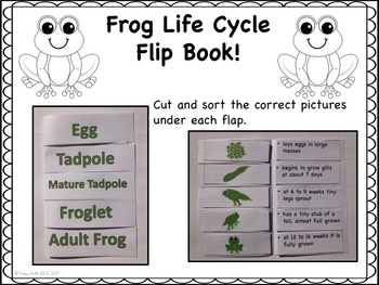 Frog Life Cycle Unit!  Lots of fun activities for K-3!