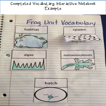 Frog Life Cycle Unit and Interactive Notebook
