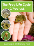 Frog Life Cycle Unit for PreK, Kindergarten, or First Grade