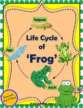 Frog Life Cycle - Unit with Worksheet / Activities
