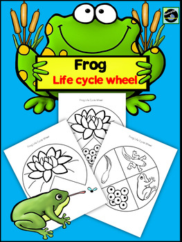 Frog Life Cycle Wheel