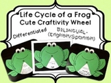 Frog Life Cycle Wheel Craftivity {BILINGUAL - SUPER CUTE!}