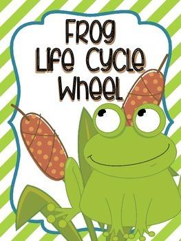 Frog Life Cycle Wheel-FREEBIE