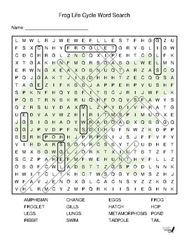 Frog Life Cycle Word Search!