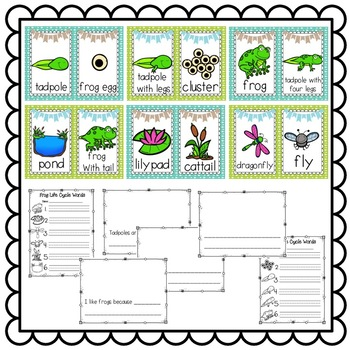 Frog Life Cycle Writing Center or Science Center Banner