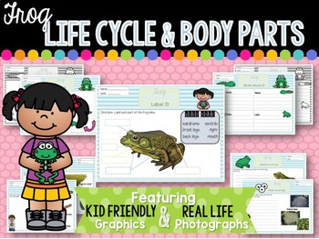 Frog Life Cycle and Body Parts
