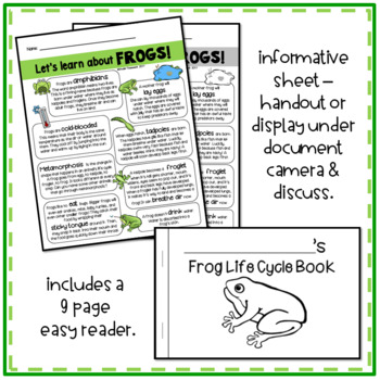 Frog Life Cycle and More for Primary Grades (Kindergarten and First Grade)