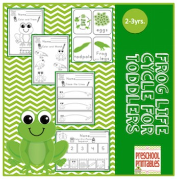 Frog Life Cycle for 2 to 3 year olds