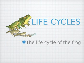 Frog Life Cycle for English-Language Learners: Powerpoint