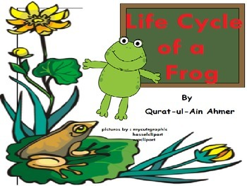 Frog Life Cycle posters:
