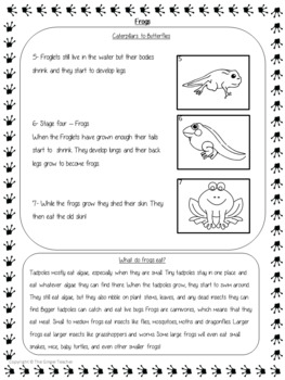 Life Cycles of a Frog Complete Science Lesson