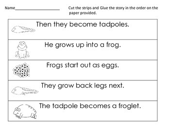 Sequencing - Frog Life Cycle