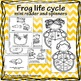 Frog Life cycle Interactive Learning MINI UNIT