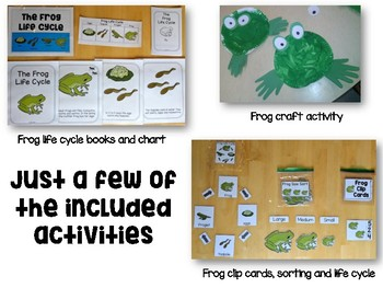 Frog Life Cycle Science & Math Pack