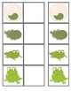 Frog Lifecycle: 4 level matching