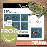Frog Life Cycle Activity Directed Drawings Digital Learning