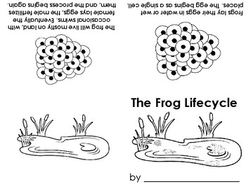 Frog Lifecycle early reader book