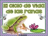 Frog Life Cycle in Spanish Las ranas