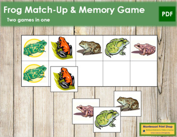 Frog Match-Up and Memory