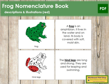 Frog Nomenclature Book (Red)