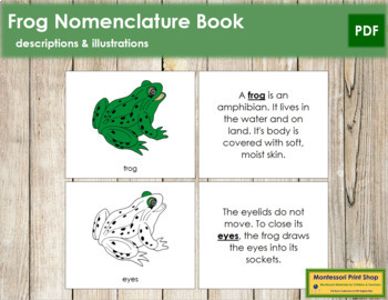 Frog Nomenclature Book