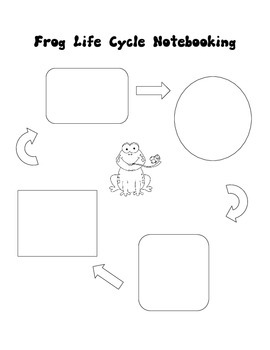 Frog Notebooking Pages