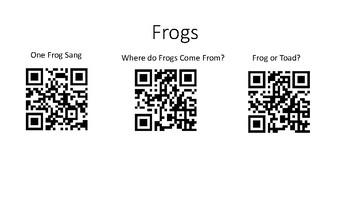 Frog QR Code
