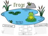 Frog Report (Brain Pop Jr.)