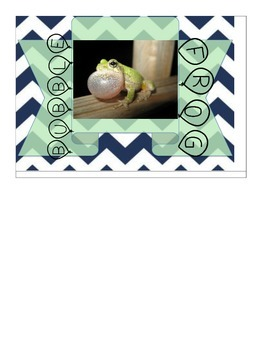Frog Themed Small Group Signs