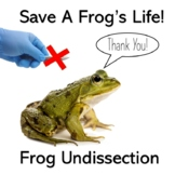 Frog Un-Dissection