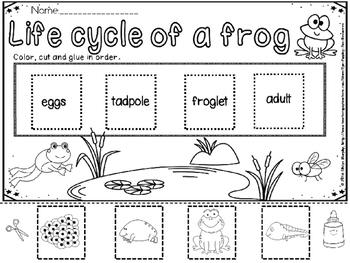 Frog activities(FREE- FEEDBACK CHALLENGE)
