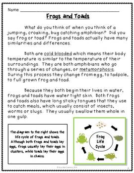 Frog and Toad All Year Book Study